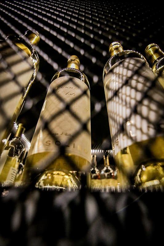 בירה בשוק